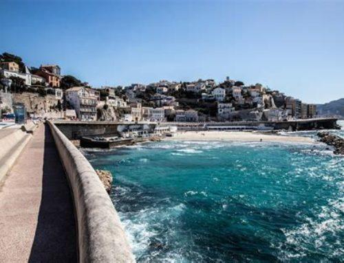 Et si Marseille levait les yeux ? Rendez-vous à la Cité de l'agriculture les 11 et 12 octobre